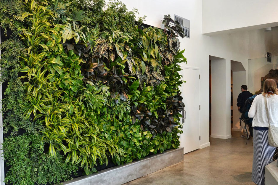 Merveilleux A Simple, Cost Effective And Foolproof Way Of Having Your Very Own Vertical  Greenwall At Home.